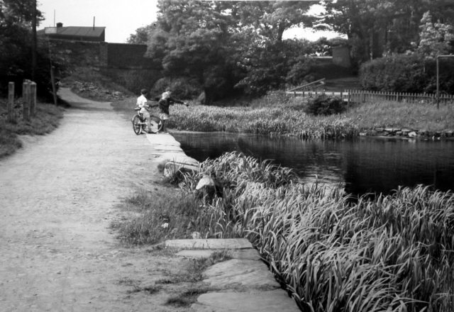 Hollinwood Branch Canal, Crime Lake