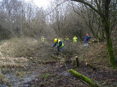Working Party, Fairbottom Branch